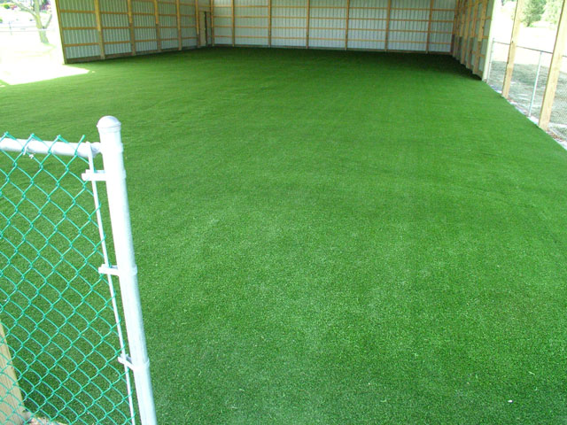 Finished Perfect Turf