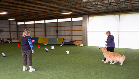 Rally-O in our pavilion